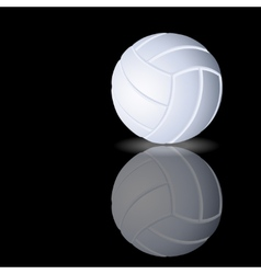volleyball on a smooth surface vector image vector image