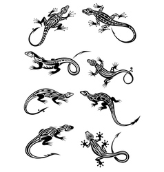 Lizard tattoos with tribal ornaments vector image vector image