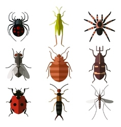 Set of insect flat icons3 vector image