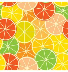 abstract citrus background vector image