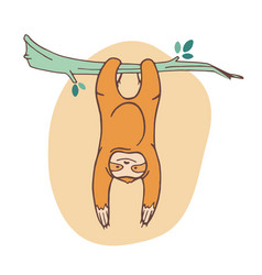 adorable sloth clinging to branch and hanging vector image