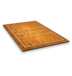 An of an aerial view of a hardwood with vector