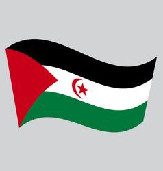 Flag of western sahara waving on gray background vector