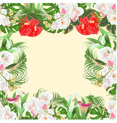 Floral frame bouquet with tropical flowers white vector