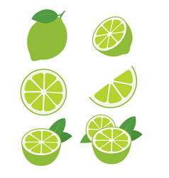 Limes fruits collection vector
