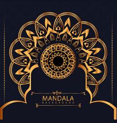 luxury mandala background with ornaments style vector image