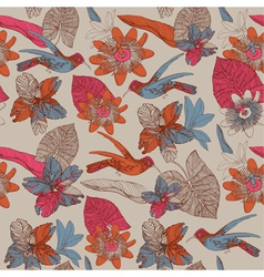 Pattern with humming birds vector