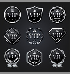 set silver vip badge label vector image