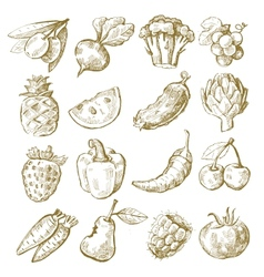 hand draw fruit and vegetable vector image