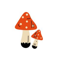 amanita muscaria poisonous mushrooms summer vector image