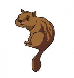 chipmunk vector image vector image