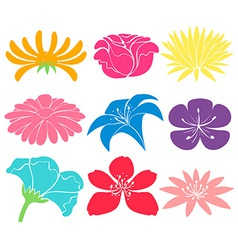 Colourful floral designs vector image
