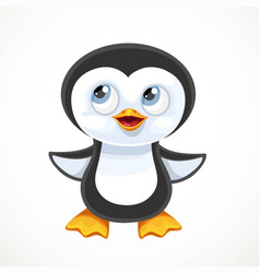 cute cartoon baby penguin isolated on white vector image