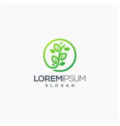 leaf logo design template vector image