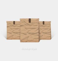 Mockup blank crumpled paper package vector