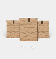 mockup of blank crumpled paper package for vector image