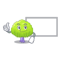 Thumbs up with board isolated weeping willow on vector