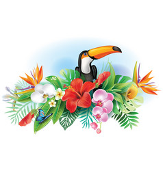 toucan and tropical flowers vector image vector image