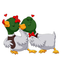 couple duck in love and kissing vector image