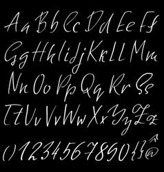 hand drawn elegant calligraphy font modern brush vector image