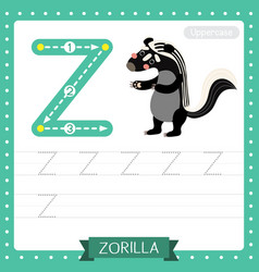 Letter z uppercase tracing practice worksheet vector