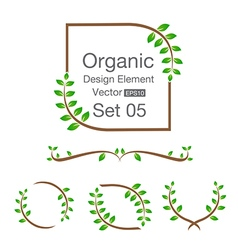 Organic design element isolated on the background vector