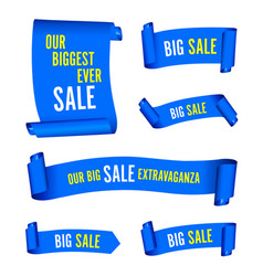 our big sale set of blue banners vector image