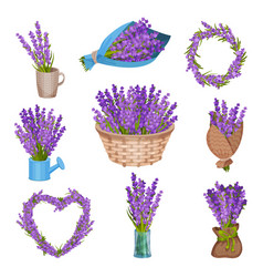 Set bouquets flowers vector