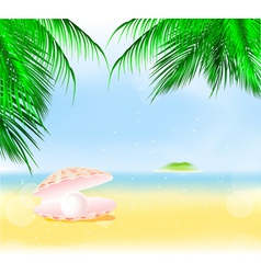 Palm Islands Pearl vector image