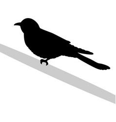 Cuckoo bird black silhouette anima vector