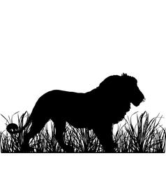 Lion in savanna vector