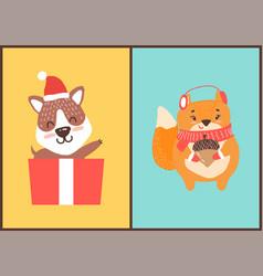 Teddy bear in santa claus hat in gift box squirrel vector