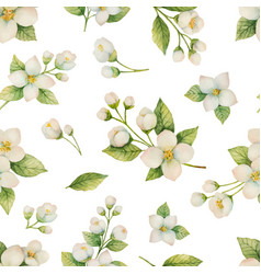 Watercolor seamless pattern of flowers and vector