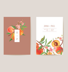 watercolor wedding peach floral invitation exotic vector image
