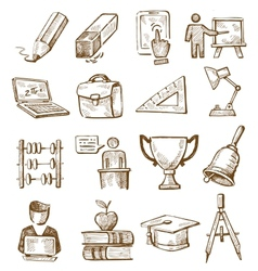 hand drawn education vector image
