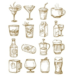 hand drawn beverages vector image