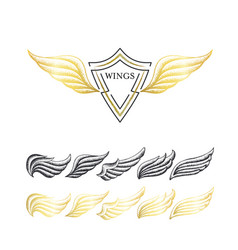 stippling wings set vector image