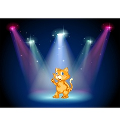 Cat on Stage vector image