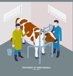 Cow health checkup composition vector