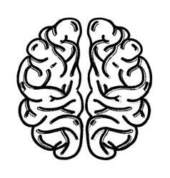 Figure human brain anatomy to creative and vector