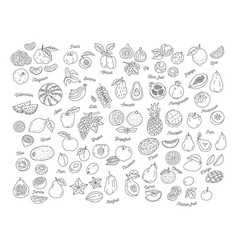 Fruit icon hand-drawn set of fruits vector
