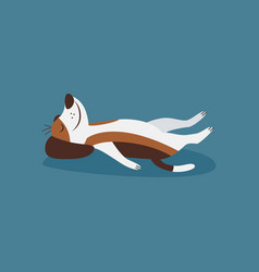 Funny beagle dog in cozy relaxation yoga pose flat vector