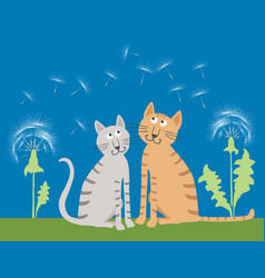 The domestic cats on the summer meadow vector