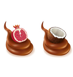 Chocolate design splash with pomegranate coconut vector