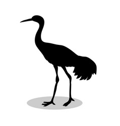 shadoof bird black silhouette animal vector image