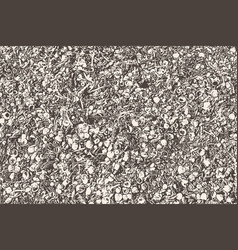 Abstract texture of seashells seaweed and pebbles vector