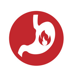 Fire sign flames icon isolated on white vector