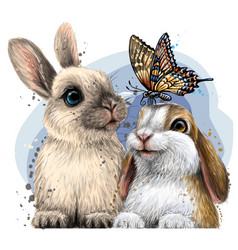little rabbits with a butterfly vector image