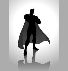 superhero in gallant pose vector image