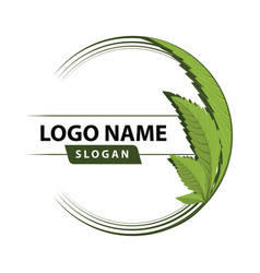Cannabis green leaf logo vector